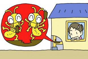 シロアリの被害のイメージ