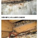 ヤマトシロアリの被害 浴室土台
