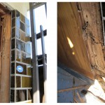 ヤマトシロアリ被害 玄関ドア