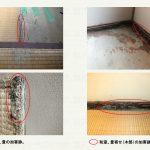 和室の被害
