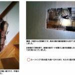 雨漏りによる木造住宅壁内の白蟻の被害