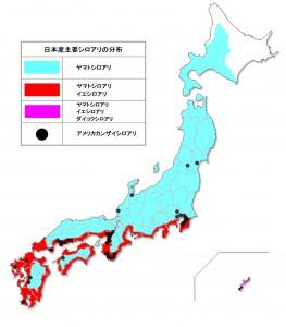 日本産主要シロアリの分布