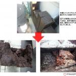 ヤマト白蟻による枕木被害