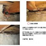 浴室からの水漏れによる白蟻の被害