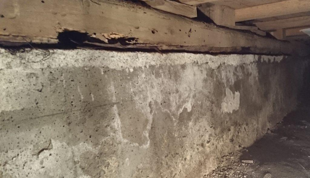 浴室 床下土台