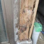 シロアリの被害 玄関柱