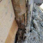 シロアリの被害 浴室柱